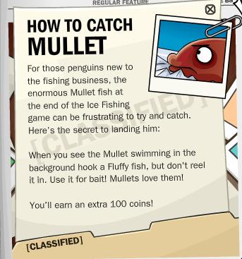 mullet2